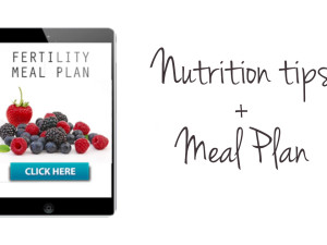 Nutrition tips and meal planning when you are trying to get pregnant