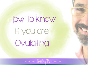 How to Recognize the Signs and Symptoms of Ovulation