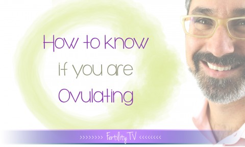 How to know if you are ovulating