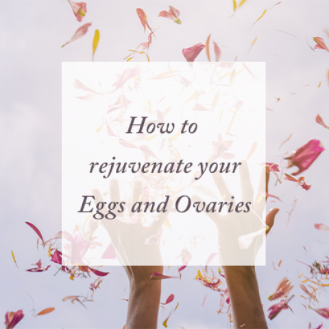 RejuvenateEggsandOvaries