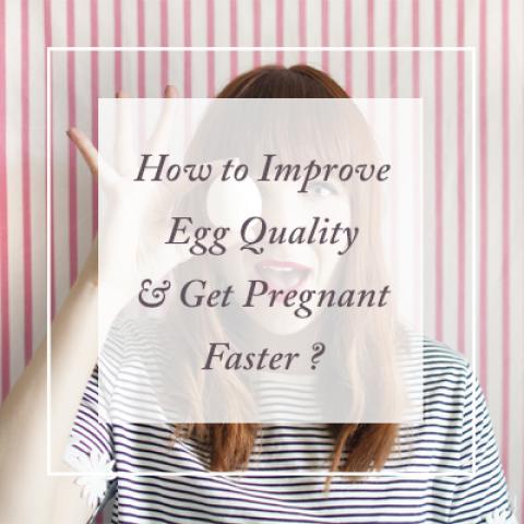 Egg Quality1