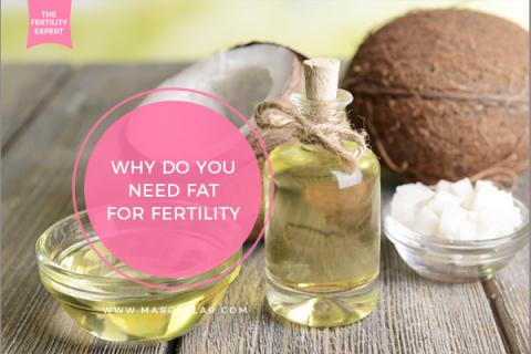 Fat for Fertility