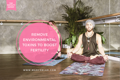 Environmental Toxins to Boost Fertility
