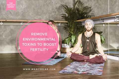 Environmental Toxins to Boost Fertility