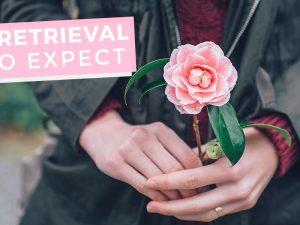 What to expect of your IVF egg retrieval
