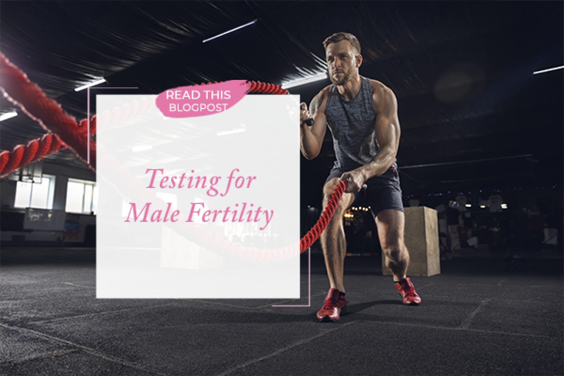 Male Fertility Testing | An Interview with Dr. Martin Bastuba