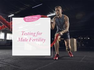 Male Fertility Testing   An Interview with Dr. Martin Bastuba